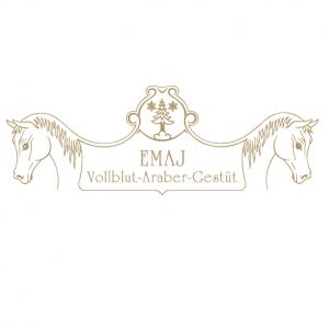 Firmenlogo von EMAJ Vollblut- Araber- Gestüt