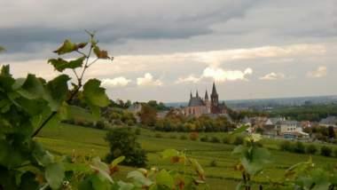 Unternehmen Weingut Dietz GbdR
