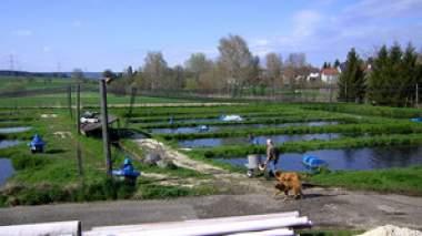 Unternehmen Forellenzucht Schmutz