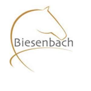 Firmenlogo von Fahrsport Michael Biesenbach