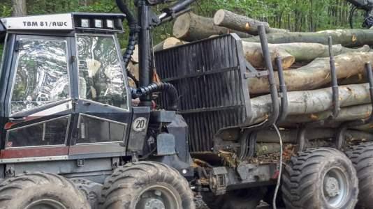Unternehmen Forstbetrieb Warning